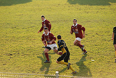 immagine-rugby