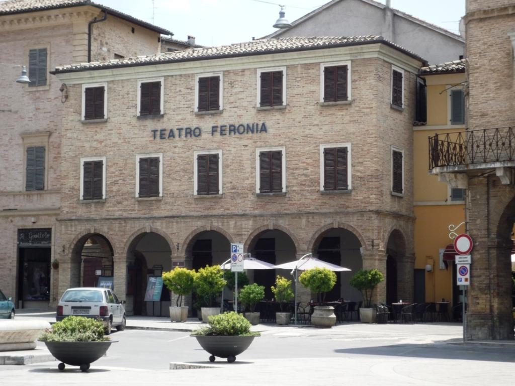 Feronia1