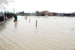 alluvione-picchio-nuova-3-300x200