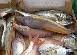 Pesce fresco in una foto d'archivio