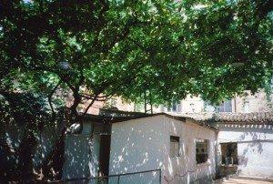 p.-51a-il-pergolato-del-Giardinetto-300x202