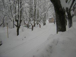 Neve-Cingoli-Anna-Maria-Colombi-3-300x225