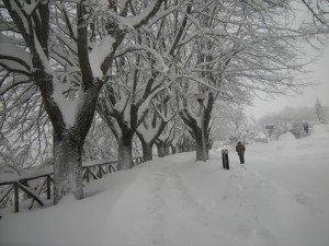 Neve-Cingoli-Anna-Maria-Colombi-4-300x225