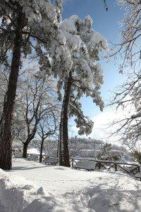 Neve-Cingoli-Doriano-Picirchiani-3-200x300