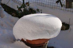 Neve-Mogliano-Angelo-Andreozzi-COLBACCO-BIANCO