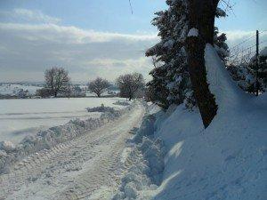 Neve-ad-Appignano-foto-di-Alessandra-Mancinelli-10-300x225