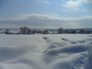 Neve-ad-Appignano-foto-di-Alessandra-Mancinelli-3-300x225