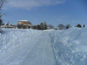 Neve-ad-Appignano-foto-di-Alessandra-Mancinelli-7-300x225