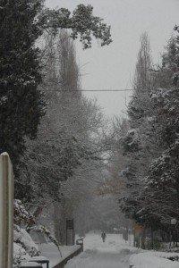Neve-allAbbadia-di-Fiastra-foto-di-Carlo-Torresi-8-200x300