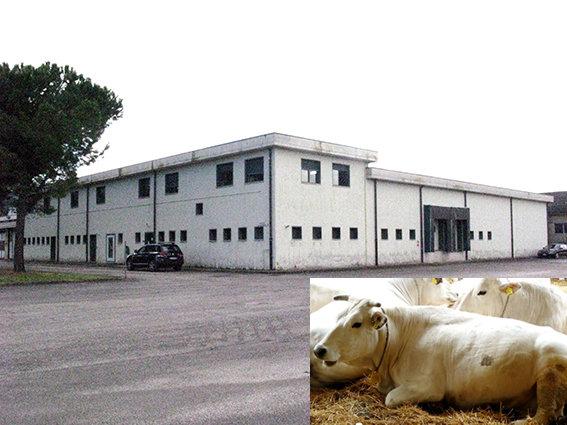 CEMACO - Il mattatoio pubblico di Villa Potenza
