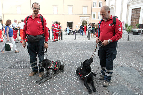 Donazione_Ambulanze_Fondazione_Carima (3)