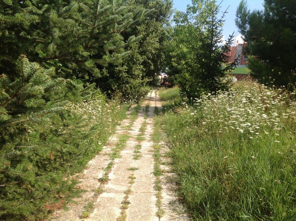 Giardini_Colleverde (2)