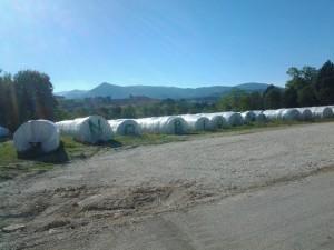 biogas_matelica