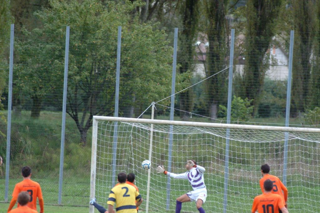 Gol Onesini