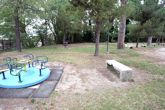 Parco_Campo_dei_Pini (3)