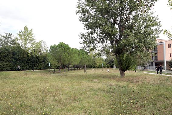 Parco_Villa_Potenza (1)