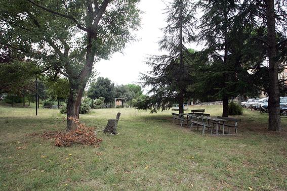 Parco_via_Weiden (4)
