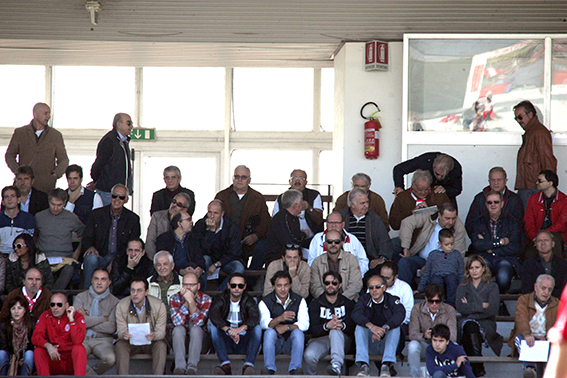 Tribuna_maceratese (4)