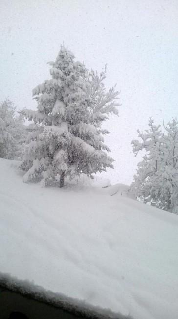 Camerino neve novembre 2013  Sara Santacchi (2)