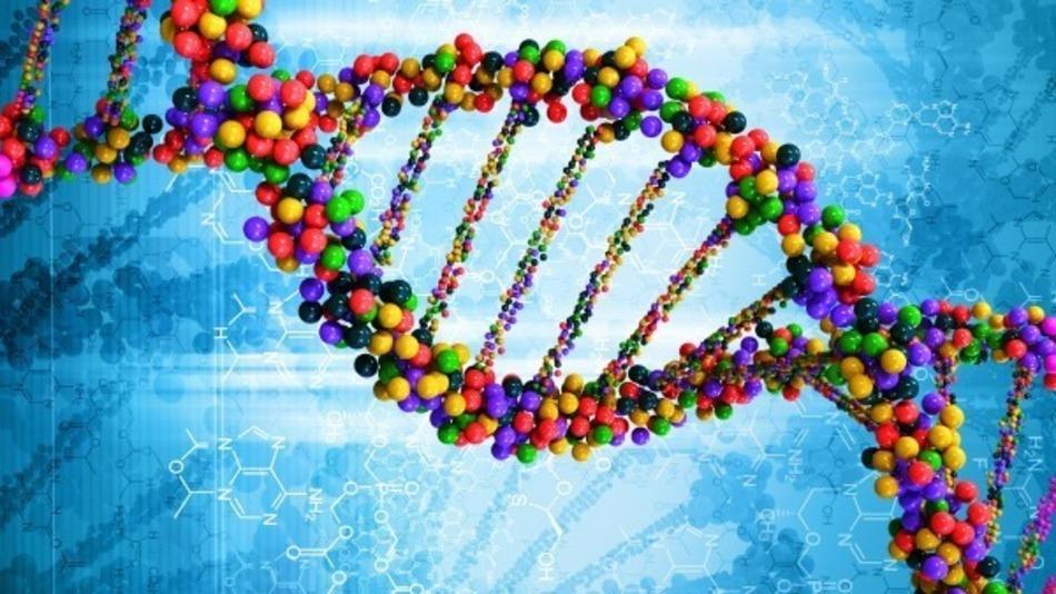 """La famosa struttura a """"doppia elica"""" del DNA, la molecola che contiene le informazioni sulla vita"""