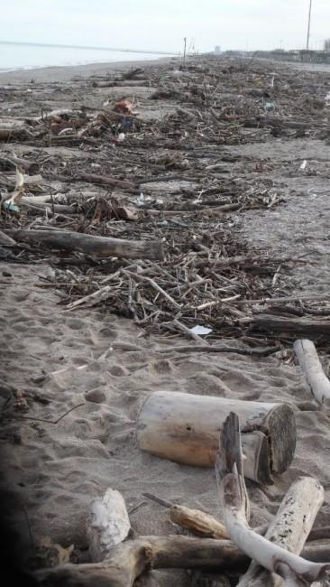 rifiuti spiaggia civitanova