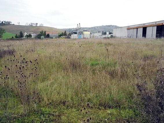 La zona industriale di Montelupone