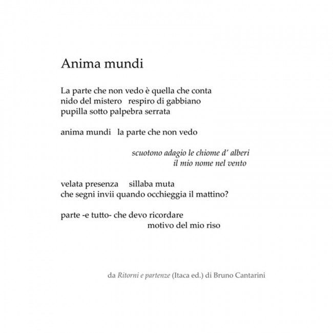 bruno-cantarini-anima-mundi