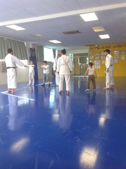 judo down