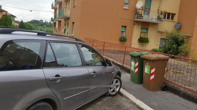 Cassonetti via Borghi, La Pace (4)