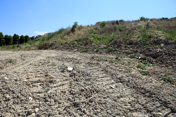La discarica per rifiuti speciali sorgerà a contrada Tergi