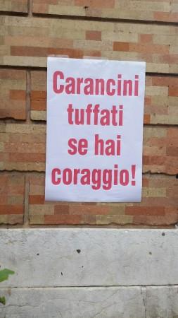 cartelli contro sindaco_flashmob (2)