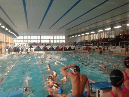 il grillo piscina