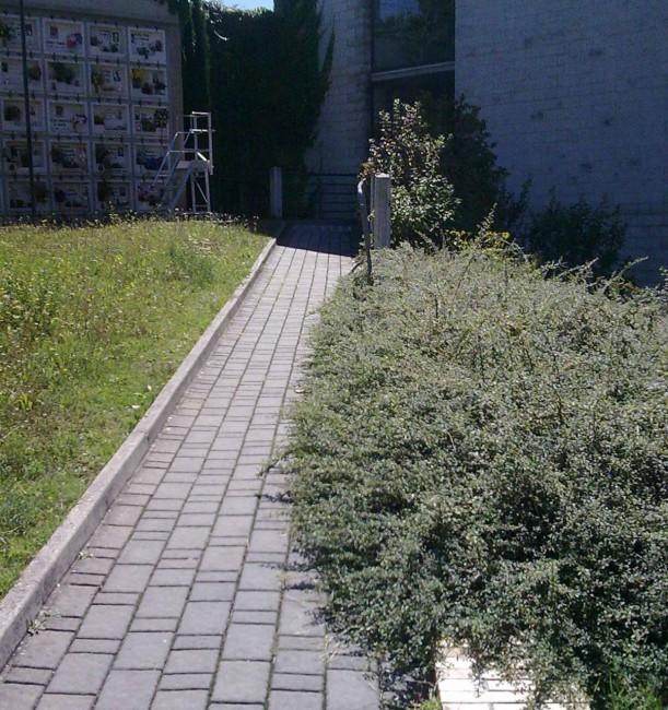 cimitero_macerata_umberto_prenna-25-611x650