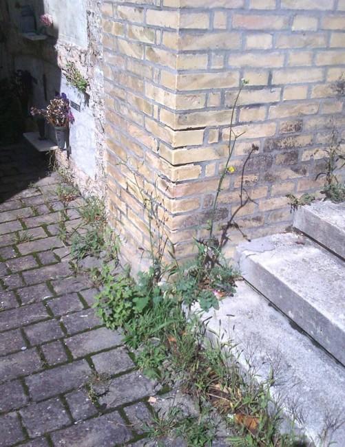 cimitero_macerata_umberto_prenna-7-501x650