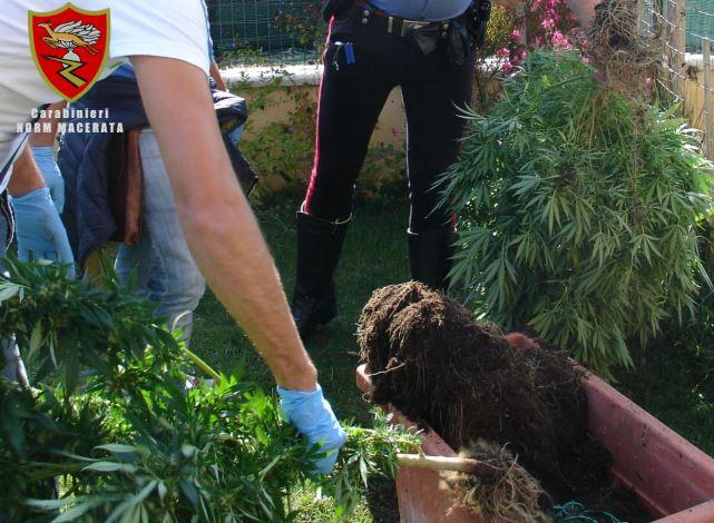 arresto droga 2