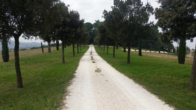 Il viale d'accesso a villa Perugini