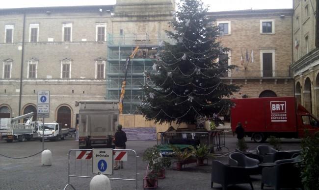 multe in piazza albero (4)