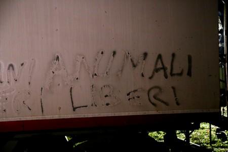 Le scritte sui camion