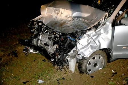 L'auto distrutta dallo scontro con l'ippopotamo (foto Picchio)