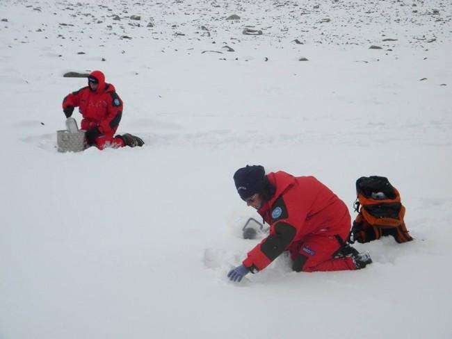 In primo piano Silvia Illuminati in Antartide durante un campionamento