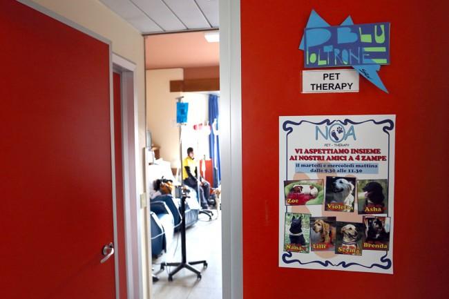 Pet therapy oncologia macerata (1)