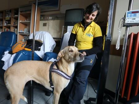 Pet therapy oncologia macerata (3)