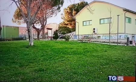 L'asilo Green nelle riprese del servizio di Canale 5