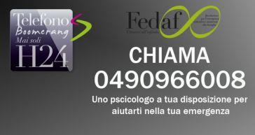 fedaf 2