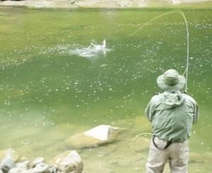 pesca-fiume-300x244