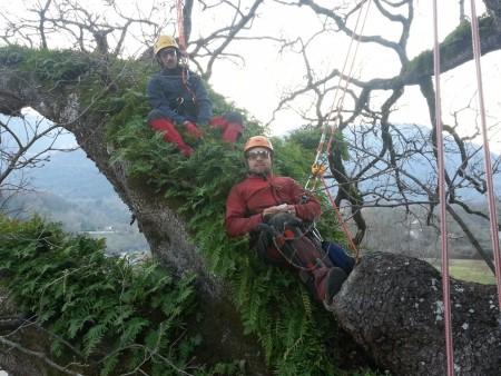 mr green, quercia, ottavio mozzoni (26)