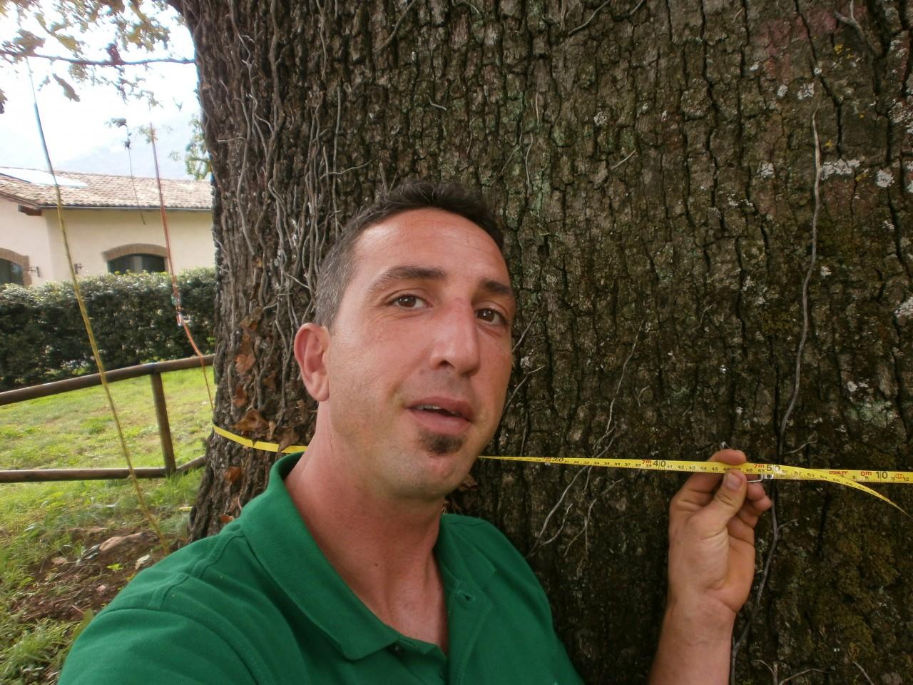 mr green, quercia, ottavio mozzoni (6)