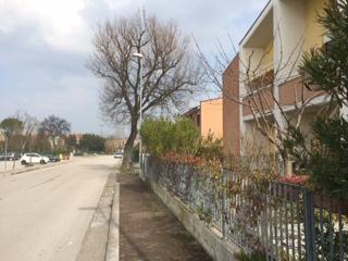 Via Palatucci