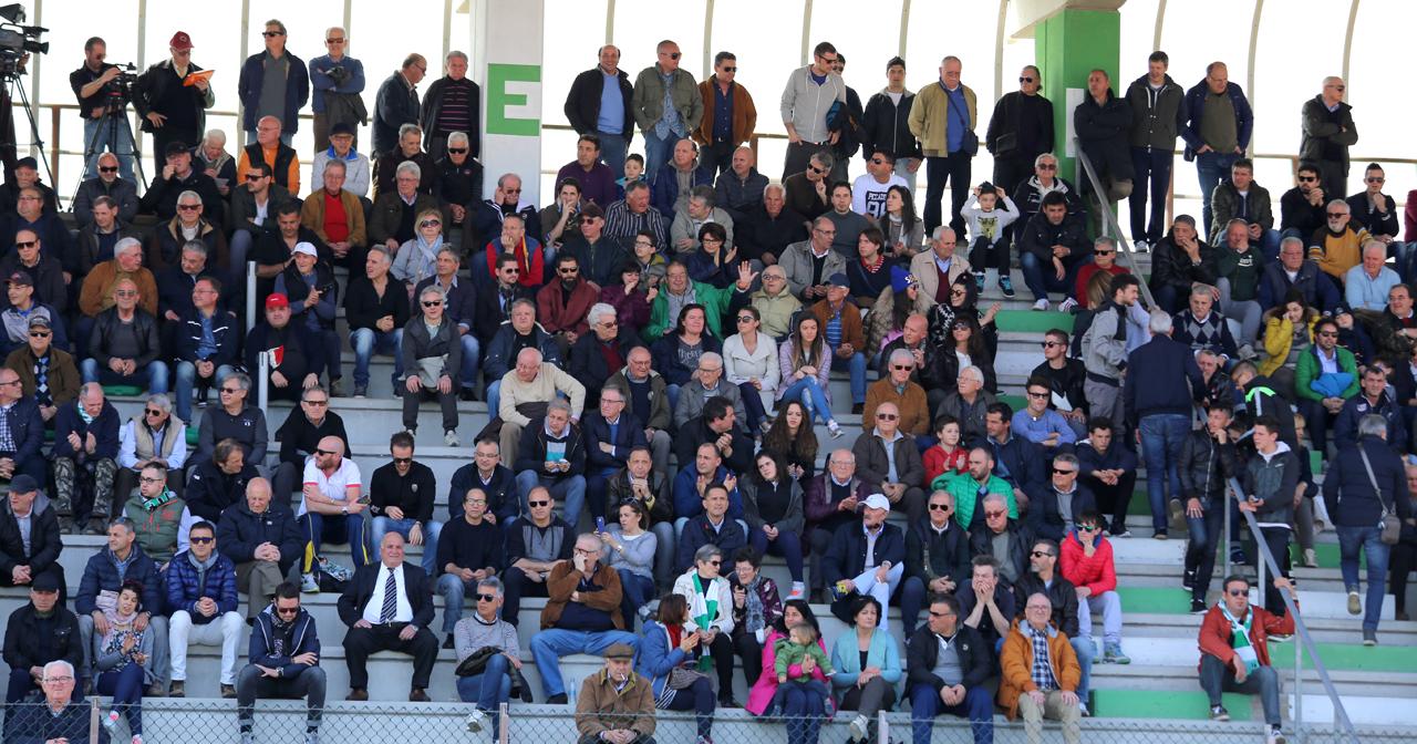 Tifosi Castelfidardo_Foto LB (1)