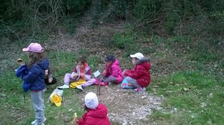 Le operazioni di piantumazione degli alberelli in località fosso Cerreto